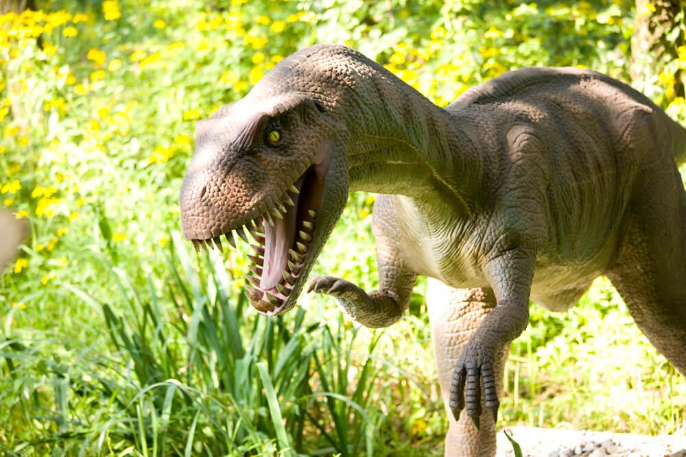 Der Dinosaurierpark ist eine tolle Attraktion und ein super Ausflugstipp mit Kind