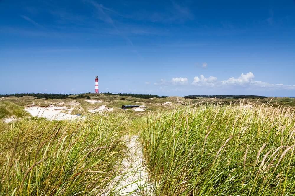 Beliebte Ausflugsziele mit Kindern in Schleswig-Holstein