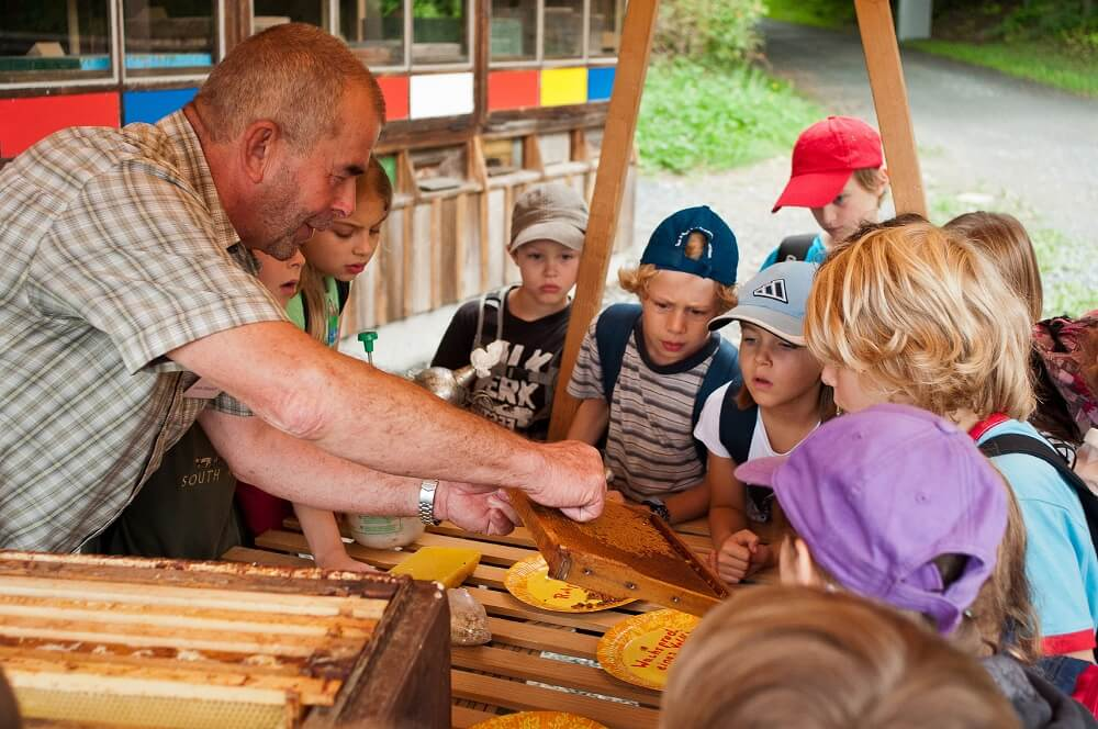 Im Hessenpark gibt es eine Imkerei, in der Kinder vieles über Bienen und Honig lernen können